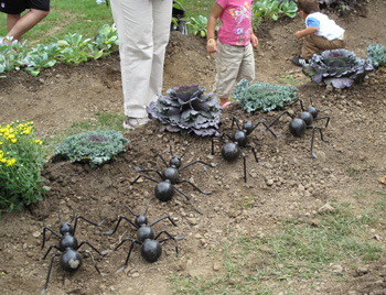 Giant Ants from Storywalk